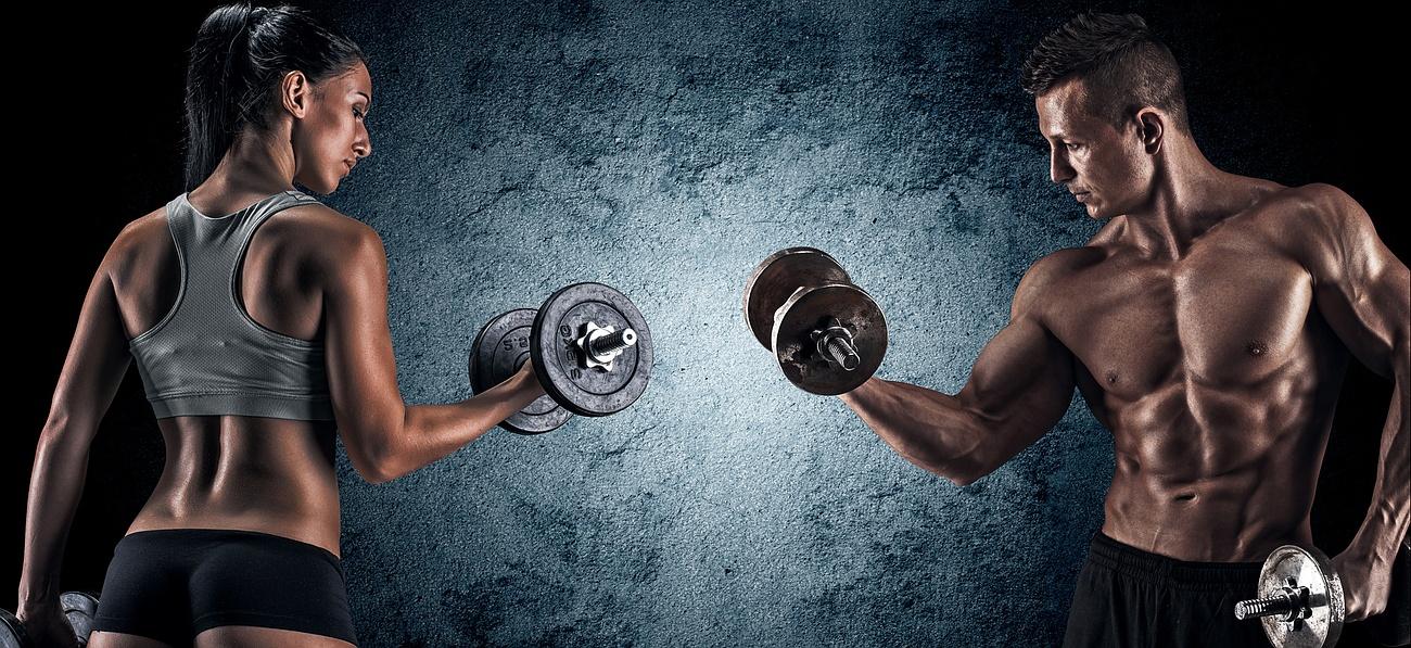 Programme de musculation : Le quel choisir ?